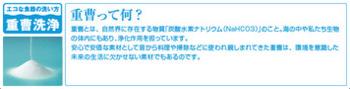 kd_point_wash_01_02