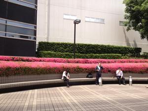 entrance1_s.jpg