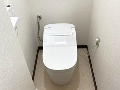 トイレ パナソニック アラウーノS160シリーズ・タイプ2 XCH1602RWS(CH1602WS+CH160FR)