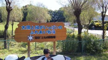 091011_120136.jpg